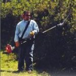 extended reach hedge trimmer